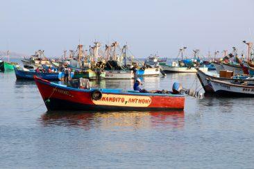 Port de Paracas