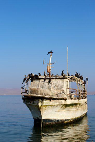 Excursion pour les iles Balestas - Le bateau aux cormorans