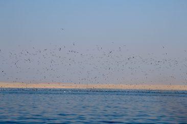 Excursion pour les iles Balestas - L'heure de la pêche