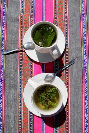 Pause thé de coca pour moins souffrir de l'altitude