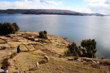 L'ile d'Amantani et ses terrasses
